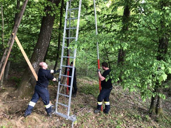 T08-Tierrettung vom 26.04.2020  |  © Feuerwehr Sebersdorf (2020)